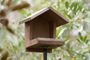 Mourning Dove platform