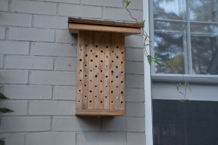 Holes drilled in non-pressure-treated wood make an excellent bee box